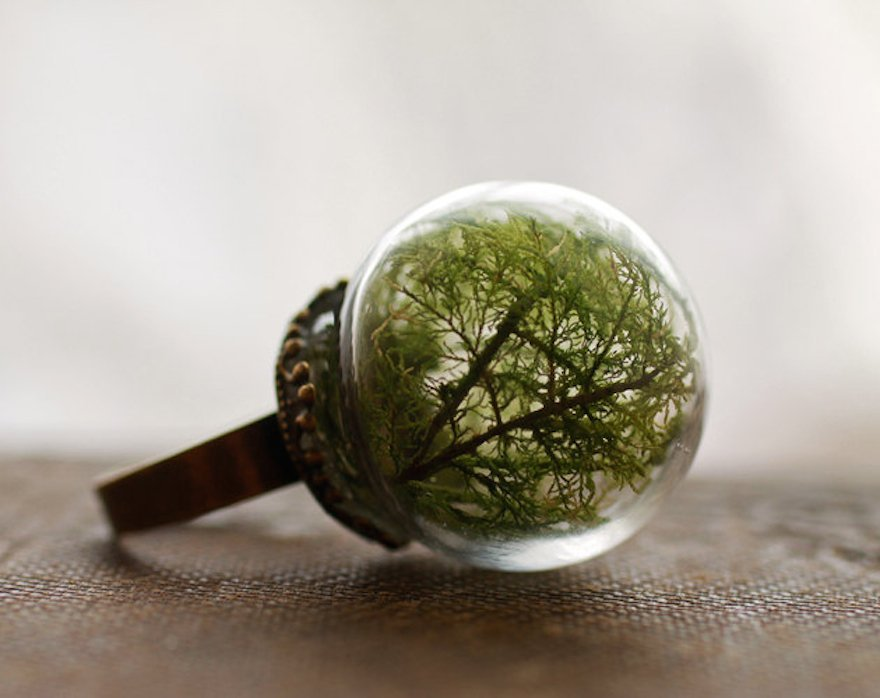 glass globe rings